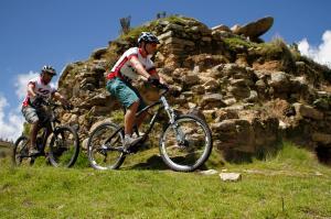 Wayo Bikes