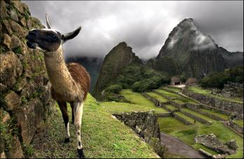 EXPLORING DREAMS PERU