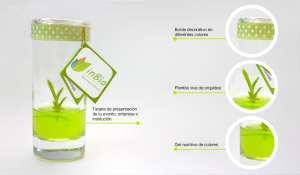 Biotecnología Invitro S.A.C.