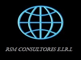 RSM CONSULTORES