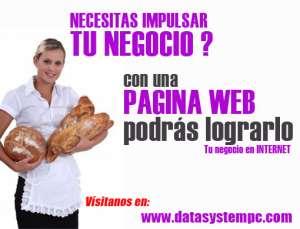 PAGINAS WEB EN HUANCAYO