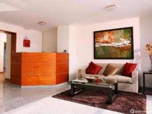 alfombras, muebles y colchones sucios?