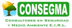 CONSEGMA E.I.R.L.
