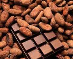 cacao P.Y.P