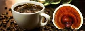 Cafe con Ganoderma Lucidum