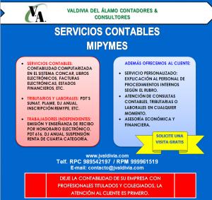 Valdivia del Álamo Contadores y Consultores