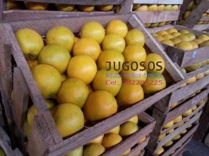Naranjas Coronel