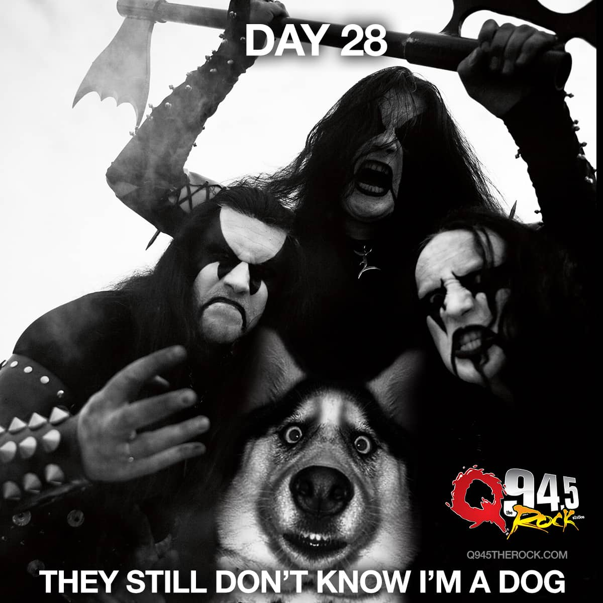 Day 28: They Still Don't Know I'm a Dog