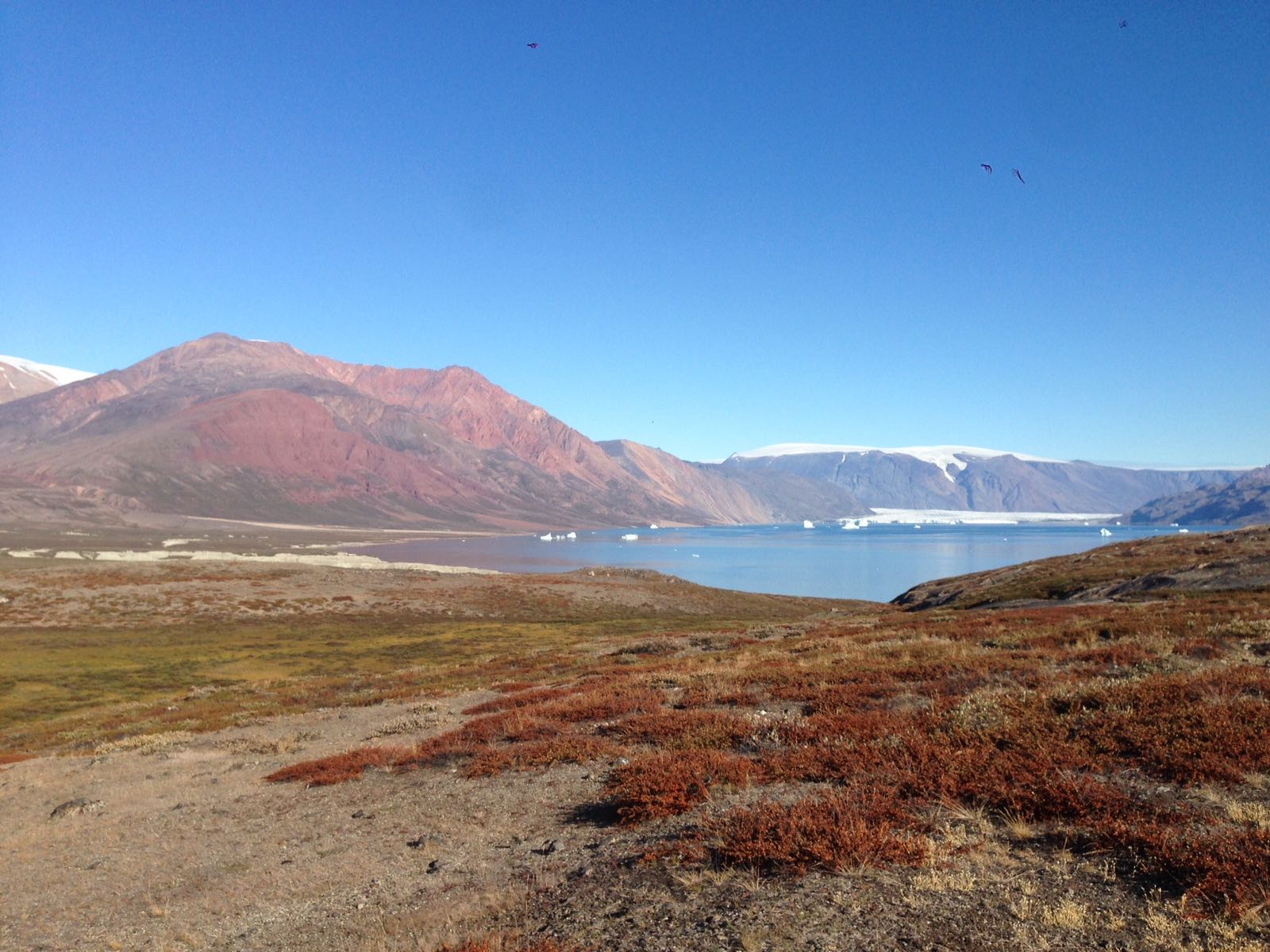 Greenland's colorful tundra and pristine bays make for great polar photography.