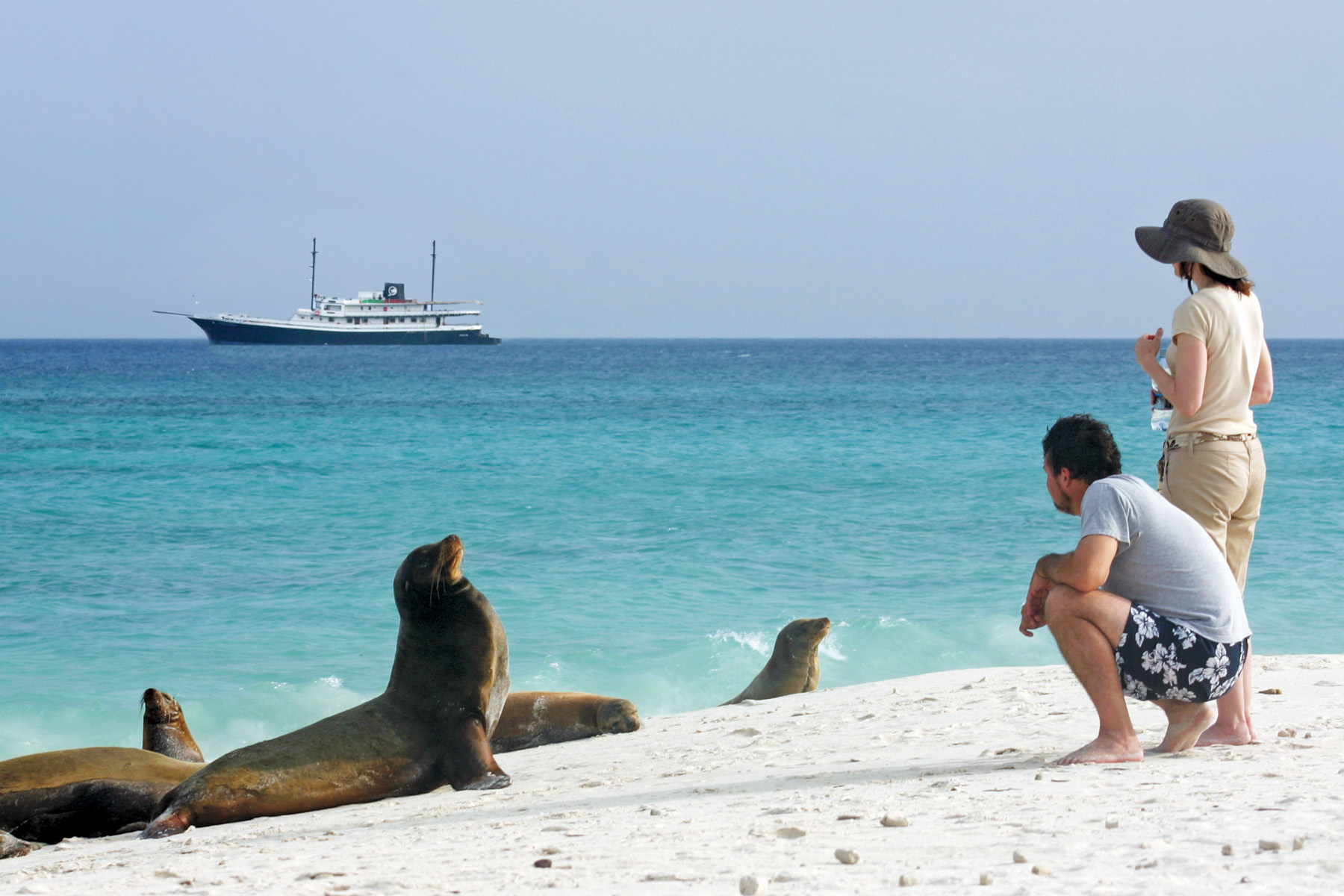 Wildlife Encounters in the Galapagos Islands