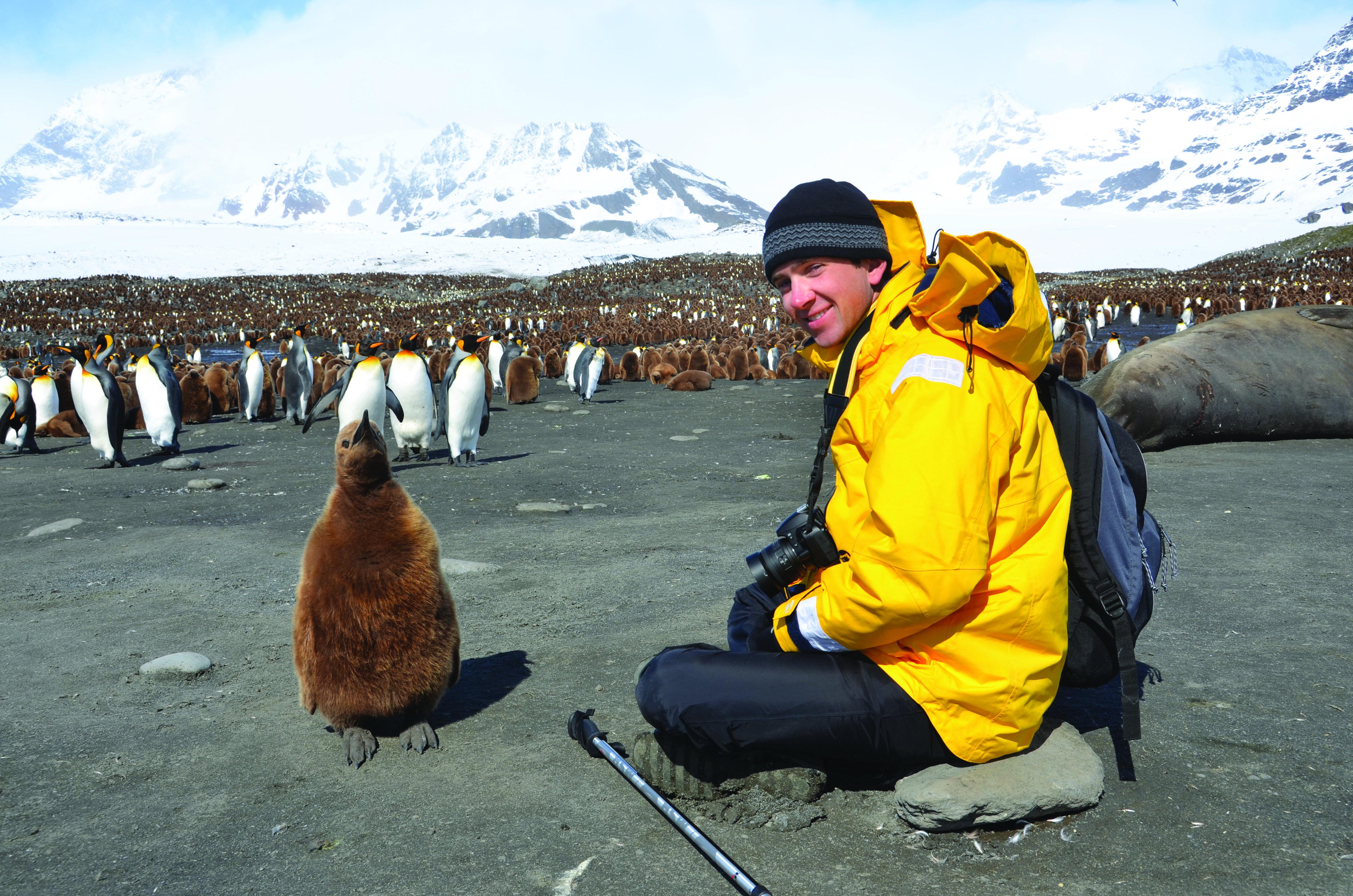 king_penguins_learning