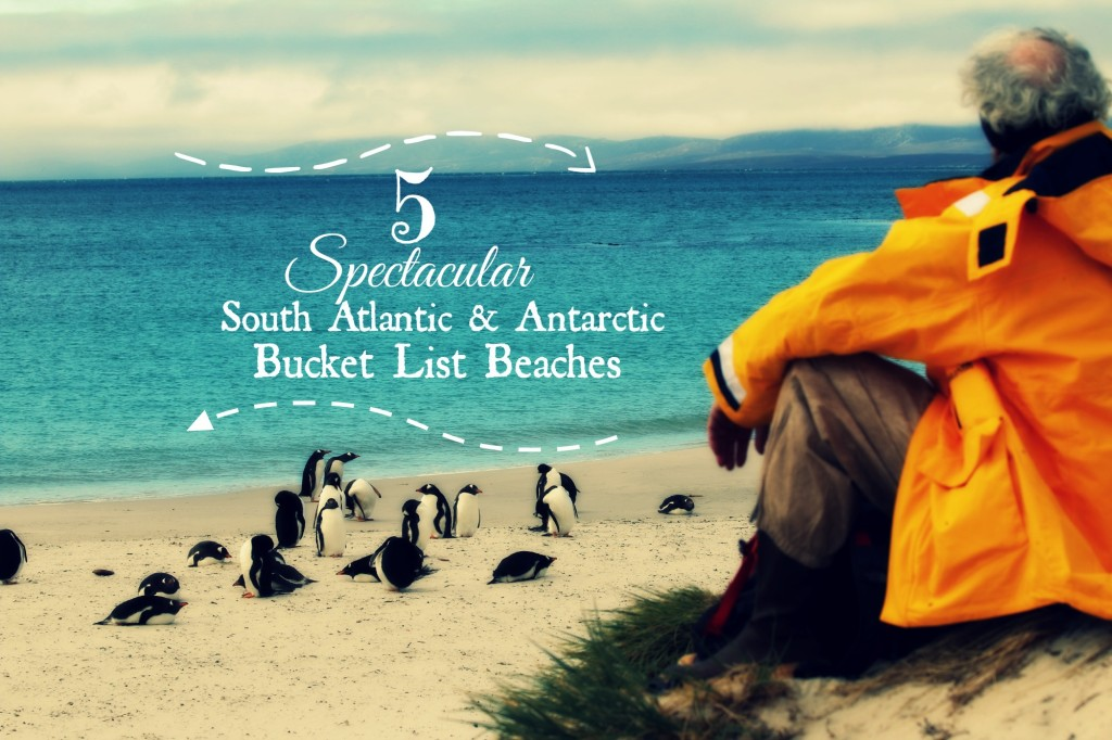 5 Spectacular South Atlantic and Antarctic Bucket List Beaches