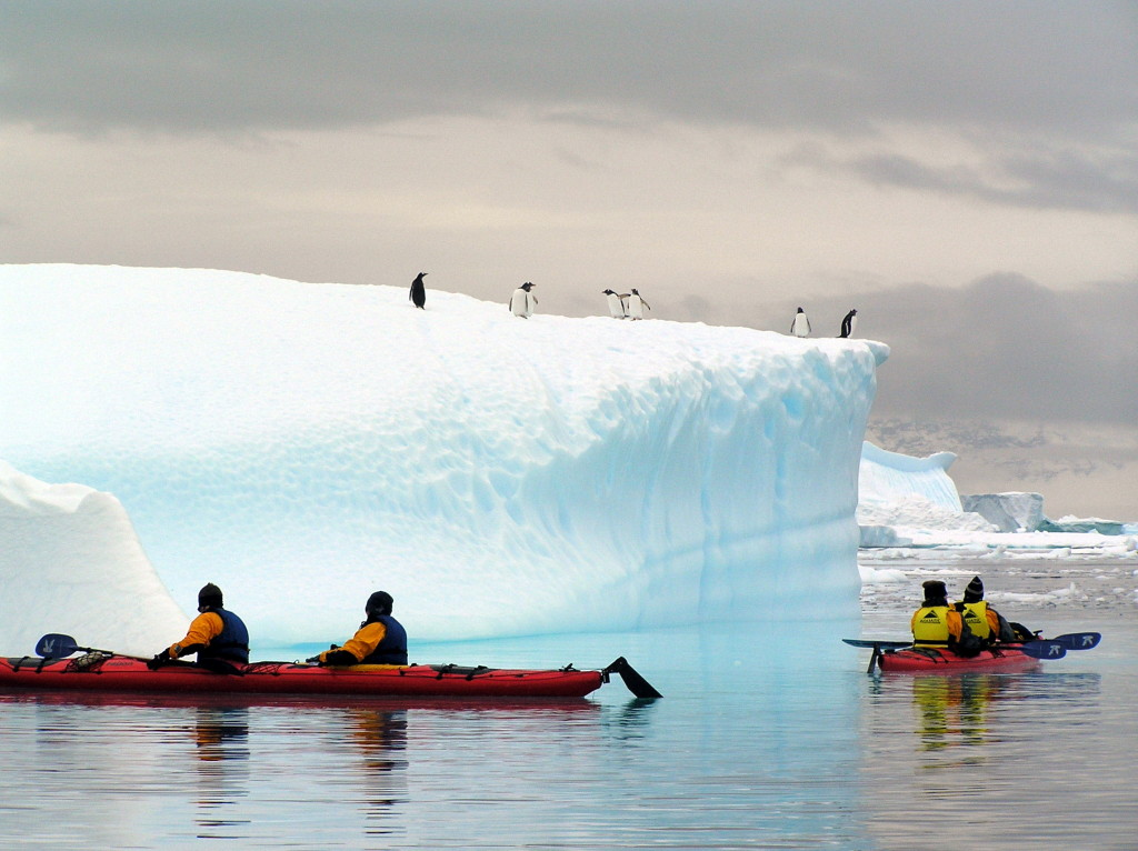 Kayaking in Danco Harbour Antarctica