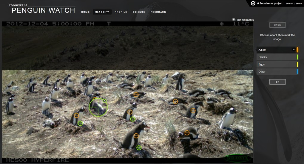 http://www.penguinwatch.org/