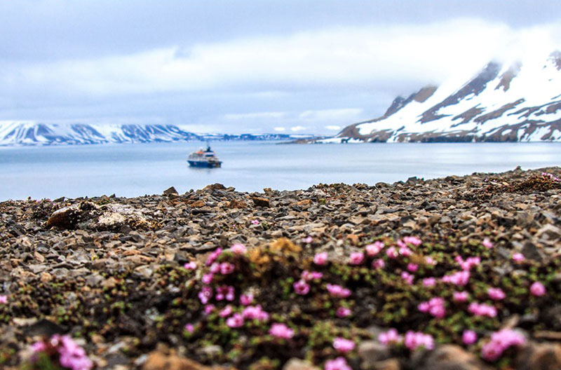 Travel to the Arctic with Quark Expeditions
