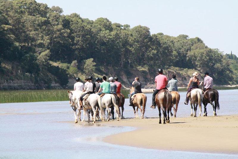 Argentina Horse Adventures