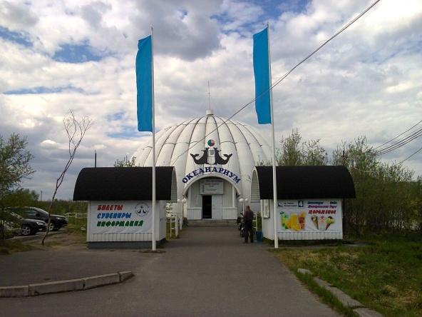Photo credit: Murmansk Oceanarium