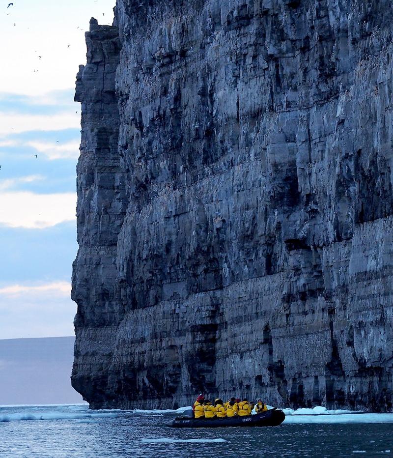 Prince Leopold Island bird cliff