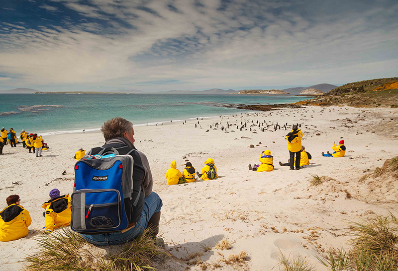 Falkland Islands - Credit: Dave Merron for Quark Expeditions