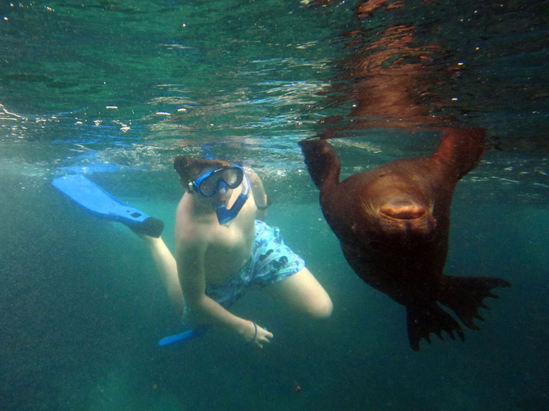 Snorkeling - Photo credit: Ecuador Tourism