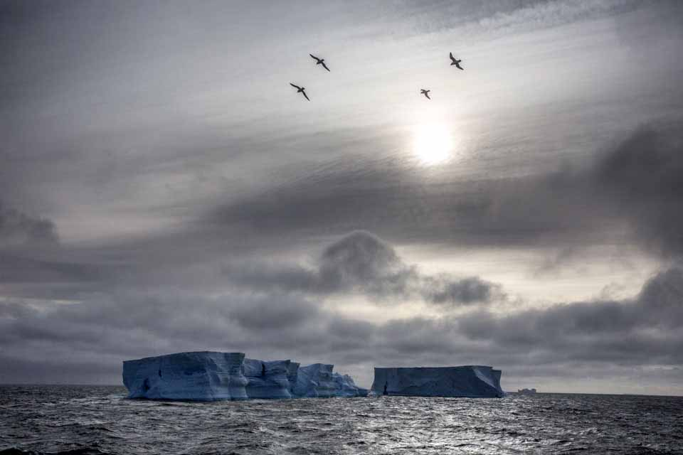 blog_end20151125_icebergs.jpg