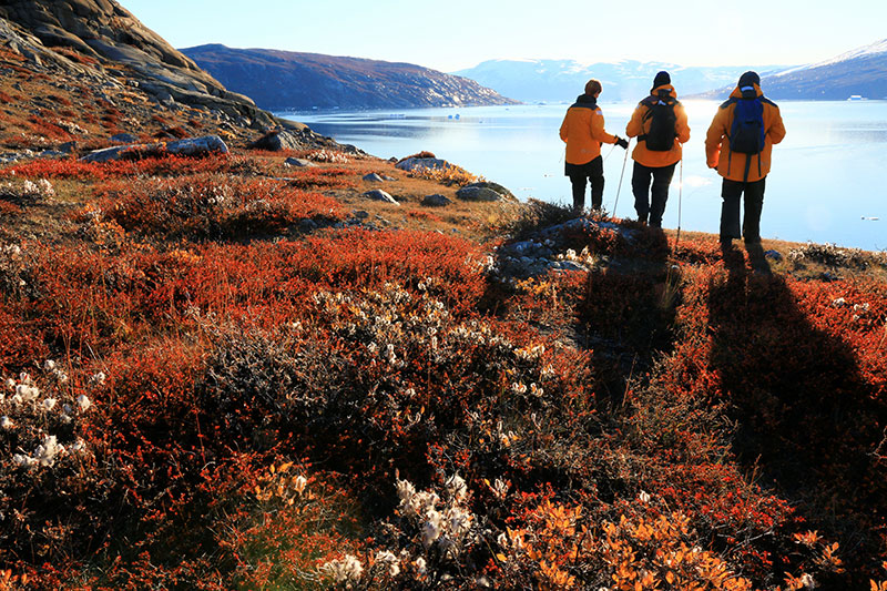 Passengers look over a pristine bay from their perch on the colorful tundra on a small ship expedition in East Greenland. Photo Credit: Steven G. Denver