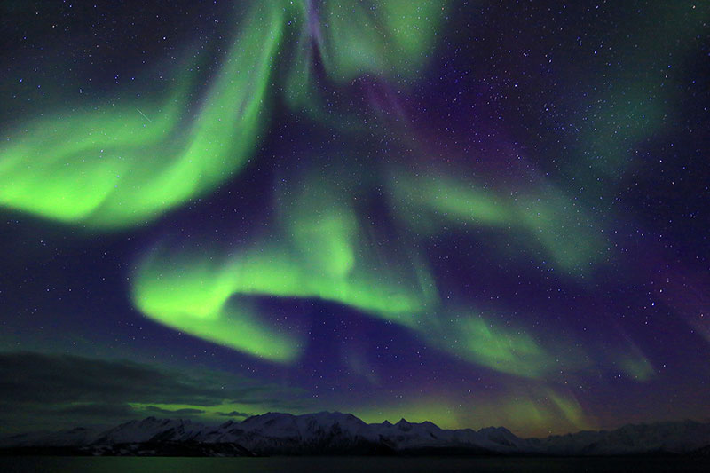 Northern Lights-YukunShih.jpg