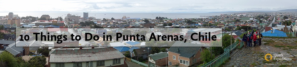 10 Things to Do in Punta Arenas