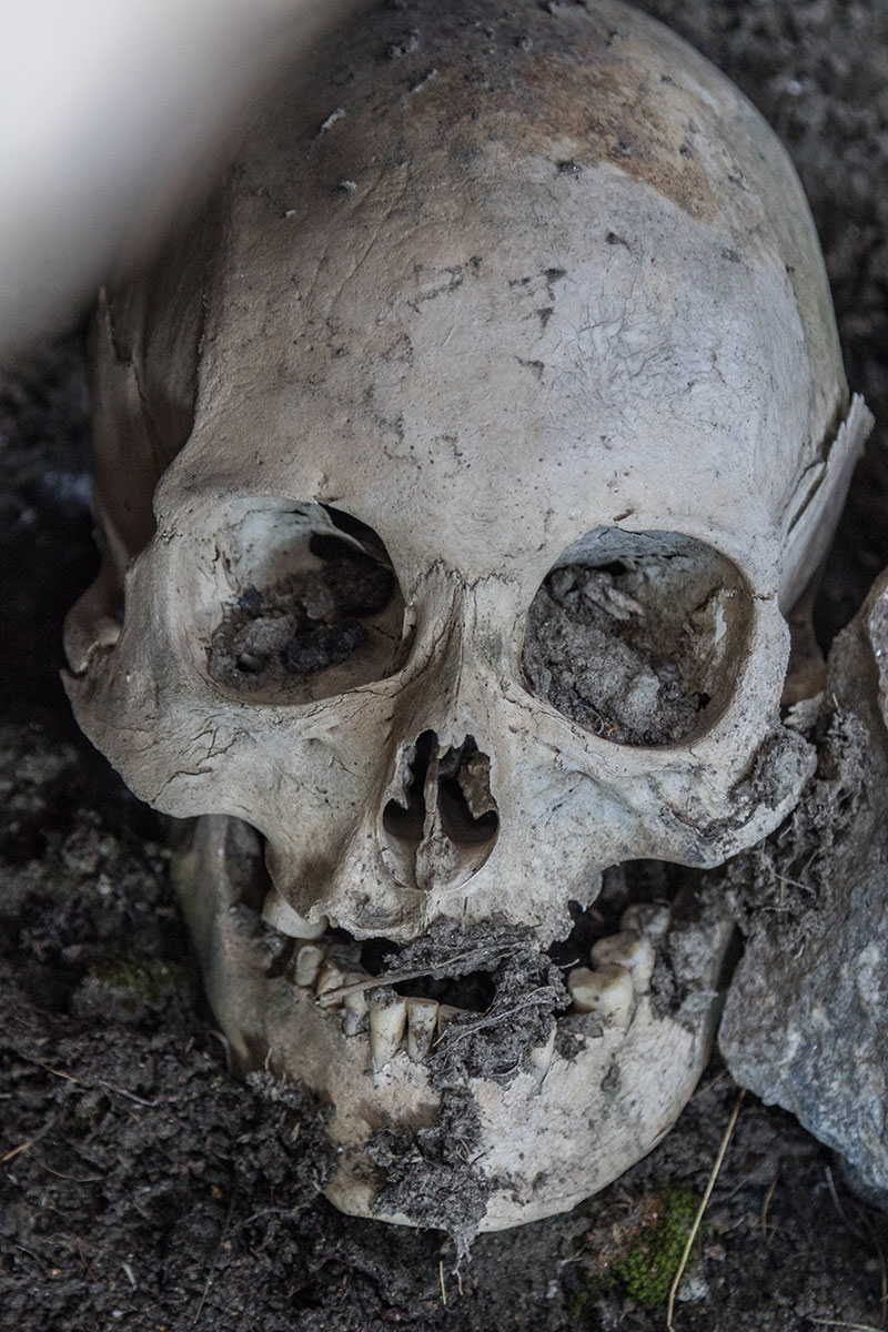 Ancient skulls found in Greenland - Photo credit: C. King