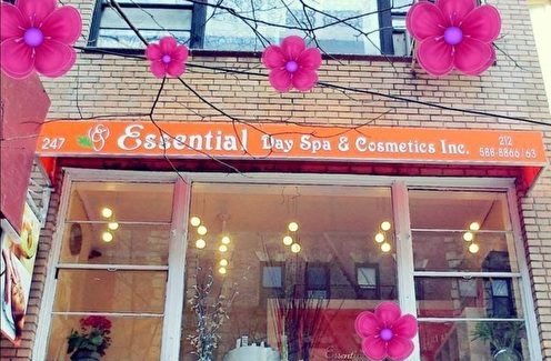 Essential Day Spa & Cosmetics - New York