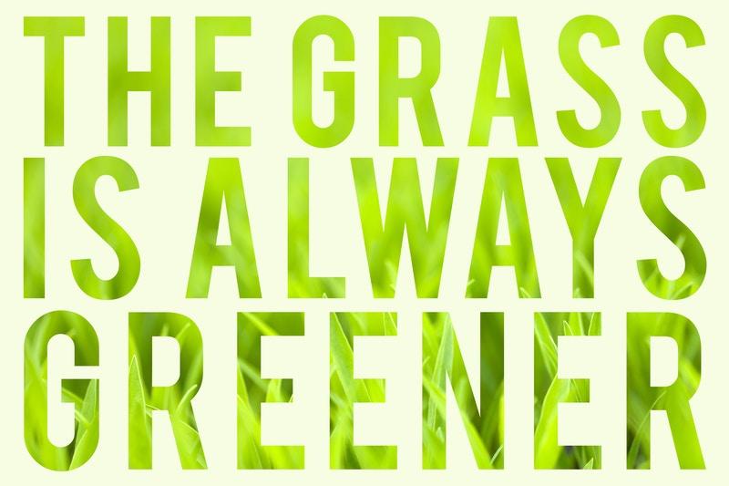 Organic lawn care wheaton