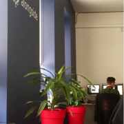 We have a green office