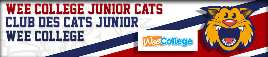 header-juniorcats-program