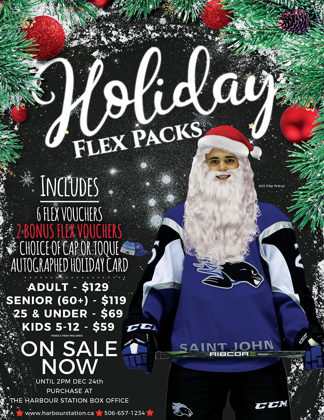 HolidayFlexPack-Poster-JPG