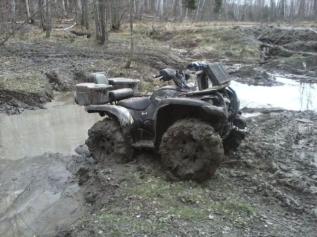 grizzly out mudding