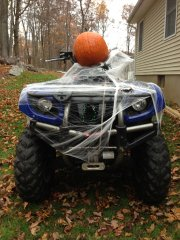 Holiday and Festive ATVs
