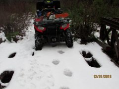 Grizzly Bear Tracks ATV