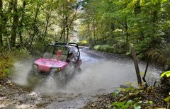 RZR on Little Coal River Trail System Oct 2010