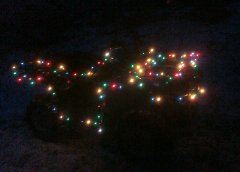 X-Mas Lights