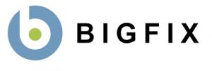 BigFix UK
