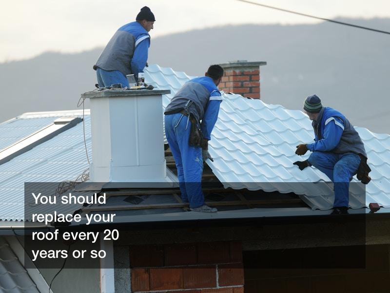 ogles roof