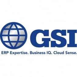 GSI, INC. logo