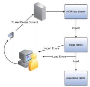 hdl-process