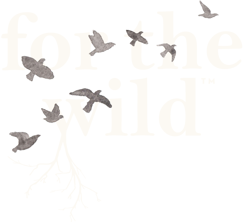For the Wild