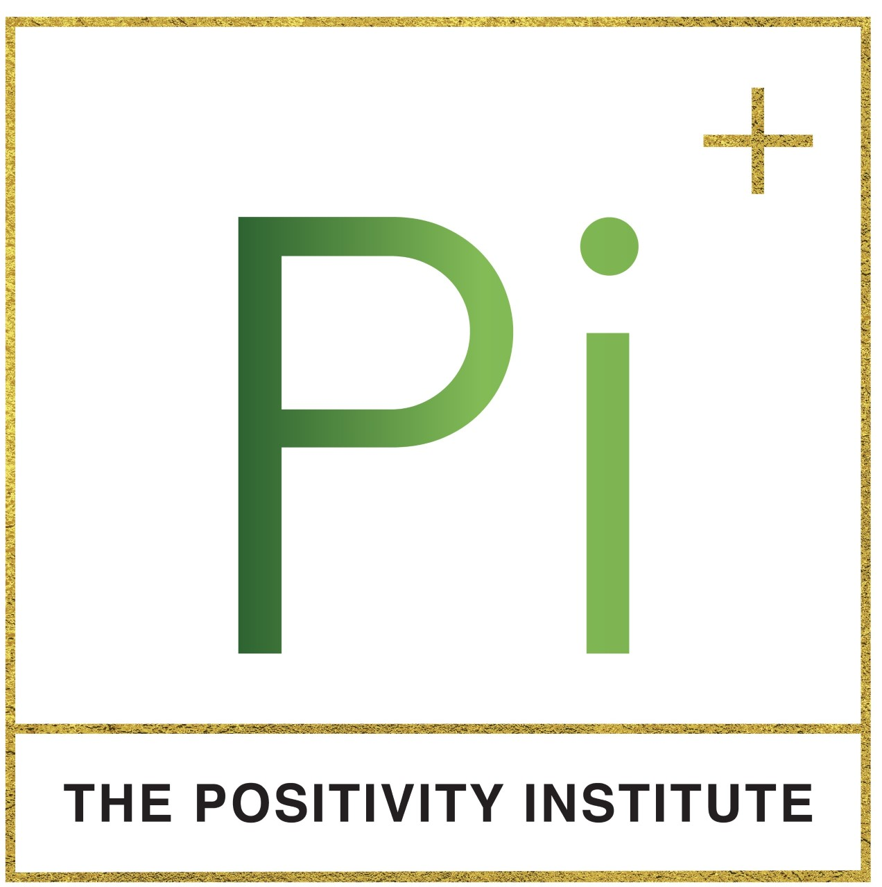 The Positivity Institute