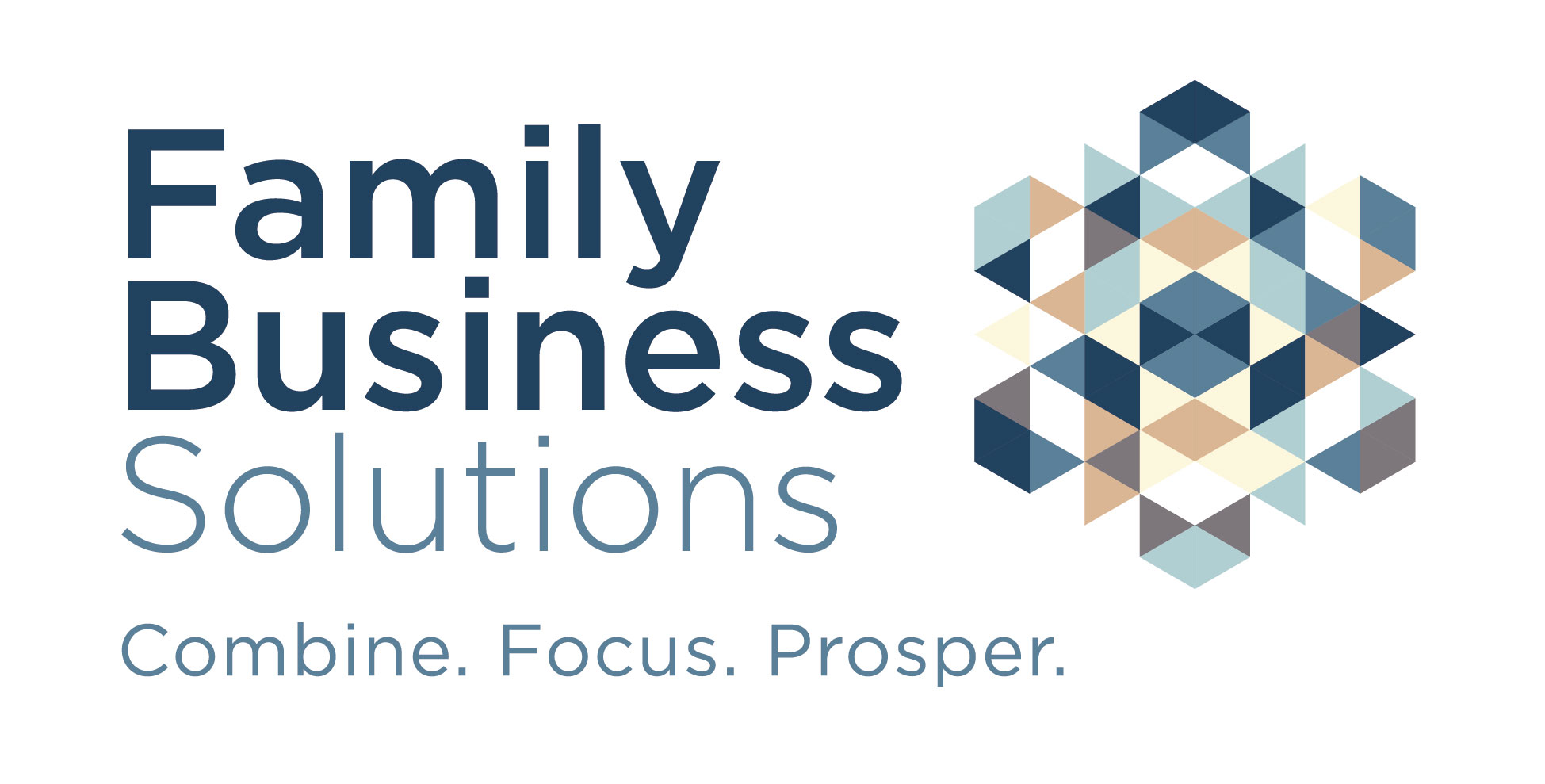 Family Business Solutions