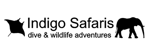 Indigo Safaris