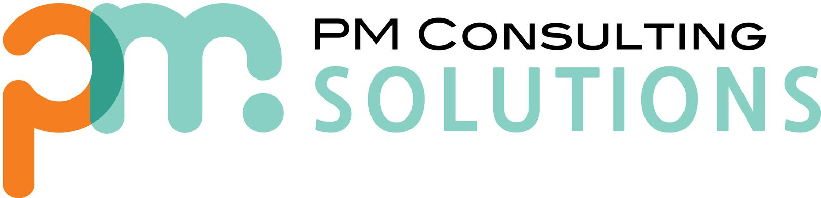 Pm Consulting Solutions
