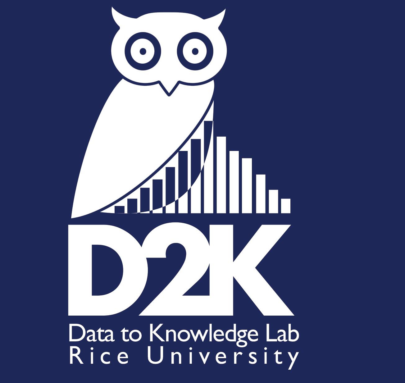 Rice D2K Lab