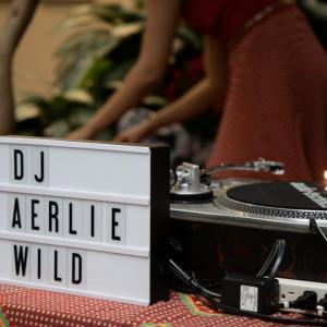 DJ Aerlie Wild